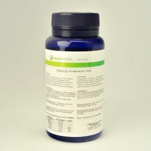 Complemento nutricional a base de algas