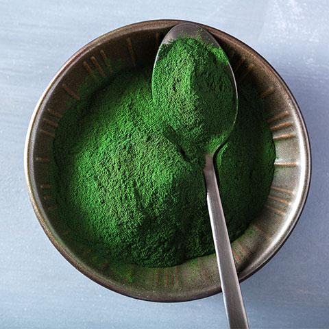algas y salud